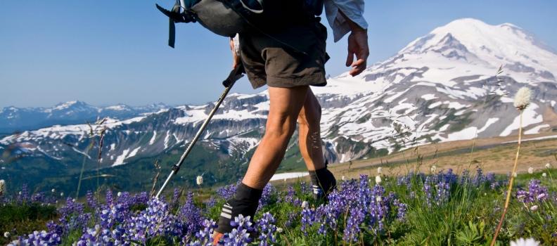Oснови на движење низ планина